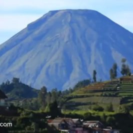 http://www.direktori-wisata.com/wonosobo-tourist-attraction/
